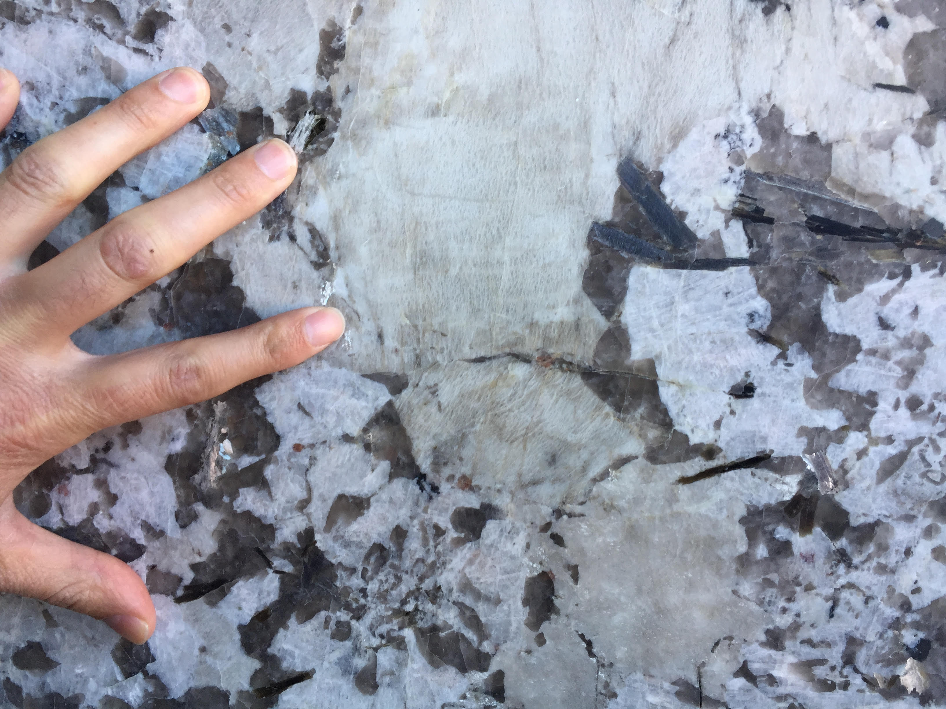 Bianco Antico Honed Granite Columbus Granite Kitchen